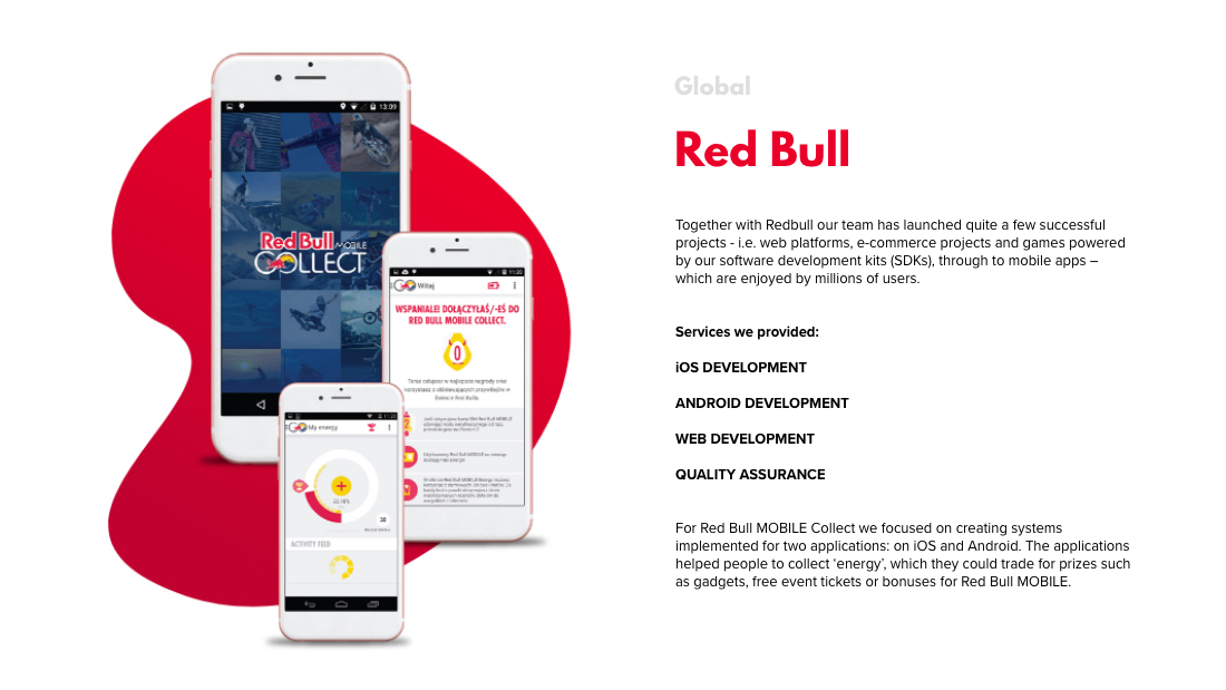 short case study about the RED BULL project