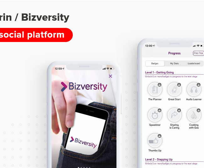 Brin Bizversity social media mobile app Concise Software